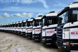 ms, santos, transportes, ms transportes, ms logistica, logistica, rapidez, qualidade, segurança,